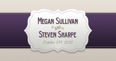 Megan and Steve Wedding Website